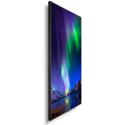 "75"" MultiSync C751Q Display"